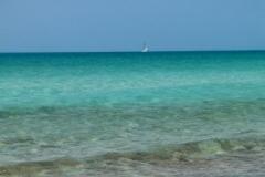 Big Guana Cay 5142 © Ann DeMuth
