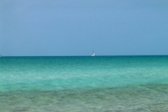 Big Guana Cay 5143 © Ann DeMuth