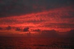 Current Island 4584 © Ann DeMuth