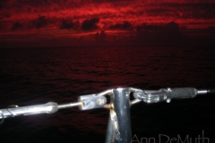 Current Island 4585 © Ann DeMuth