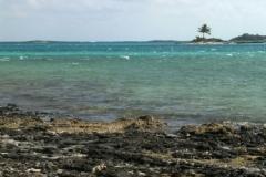 Norman's Cay 4723 © Ann DeMuth