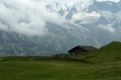 swiss alps 0615 © Ann DeMuth