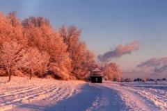 Alpenglow Shelburne VT © Ann DeMuth