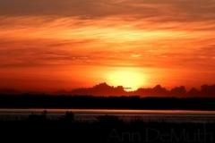 Matanzas River (270) St. Augustine, FL © Ann DeMuth