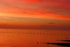 Northern Neck VA Sunrise (62) © Ann DeMuth