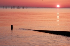 Northern Neck VA Sunrise (94) © Ann DeMuth