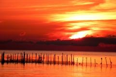 Northern Neck VA Sunrise (674) © Ann DeMuth