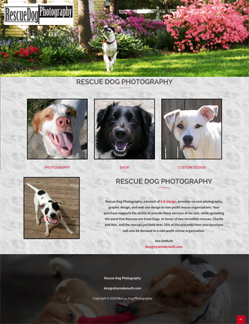 Rescue Photography and Design, Global web site